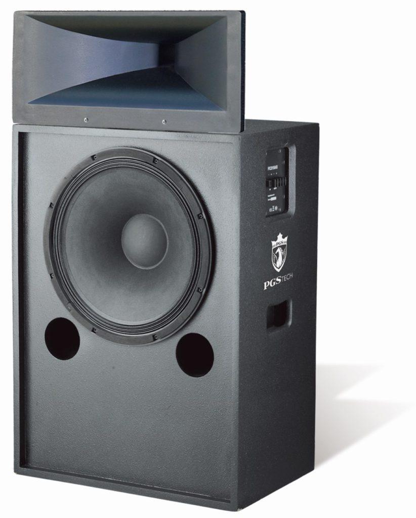 Standard Cinema Main Speaker Cabinet — FC215AII